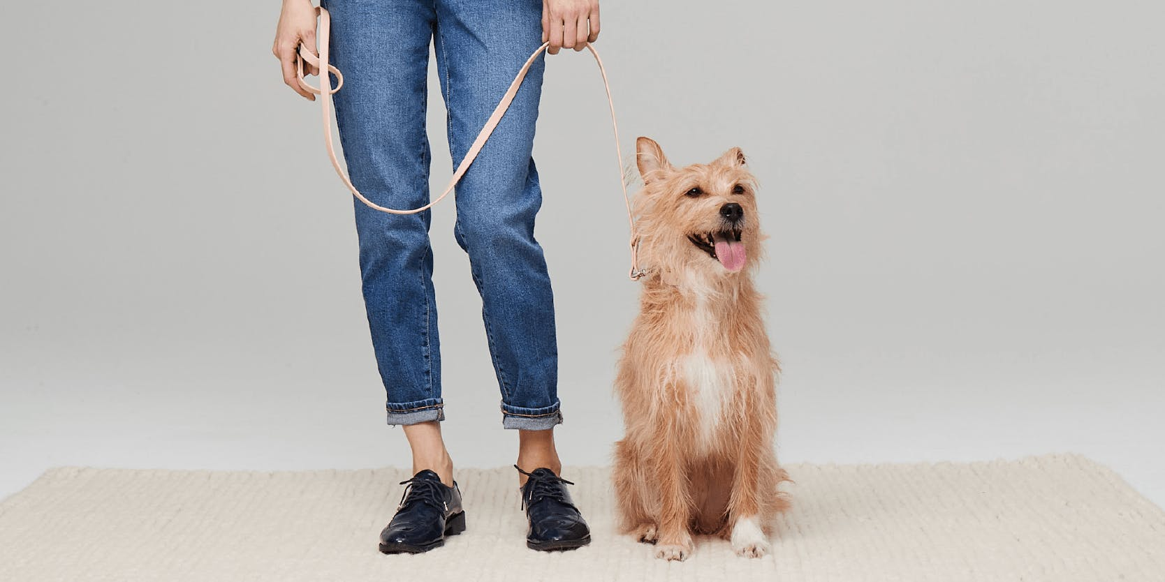 Dog and parent with leash