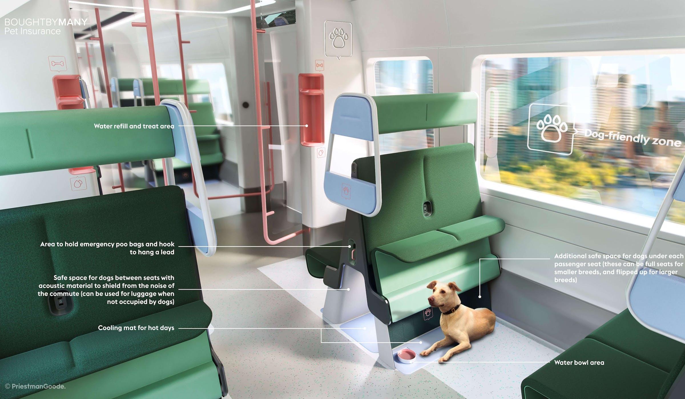 Dog-friendly train car
