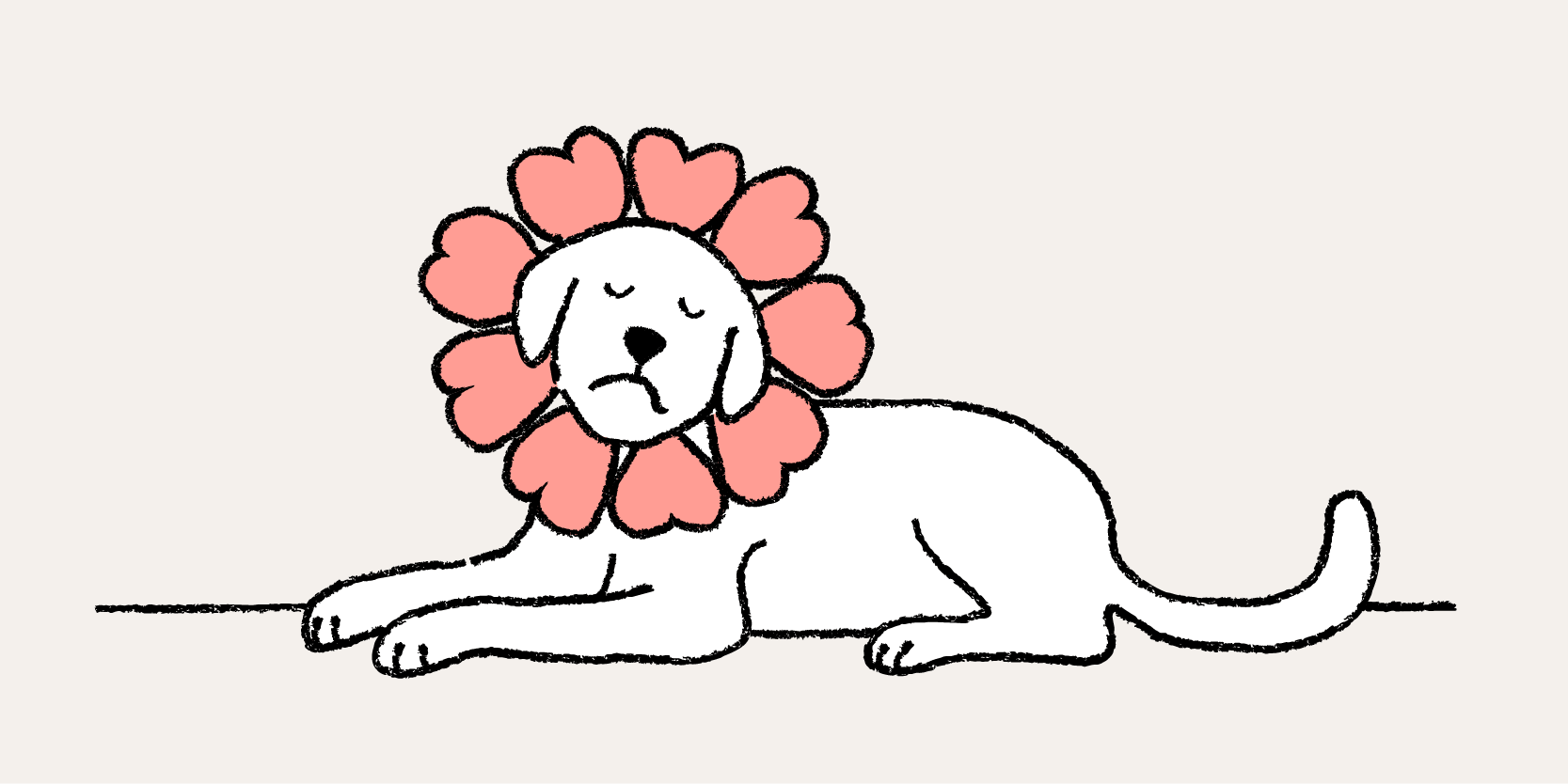 A dog with a flower collar