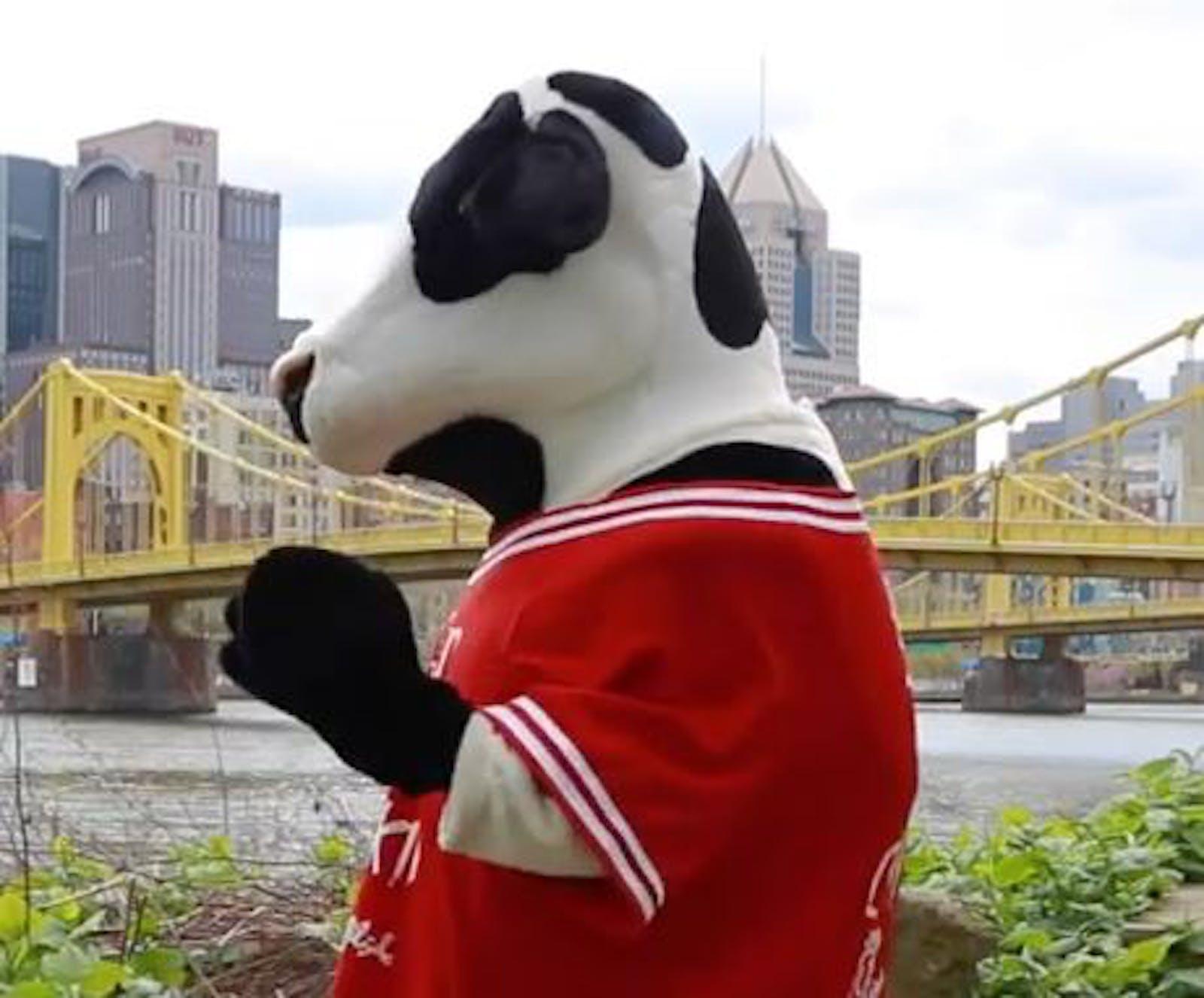 Mascot Cow