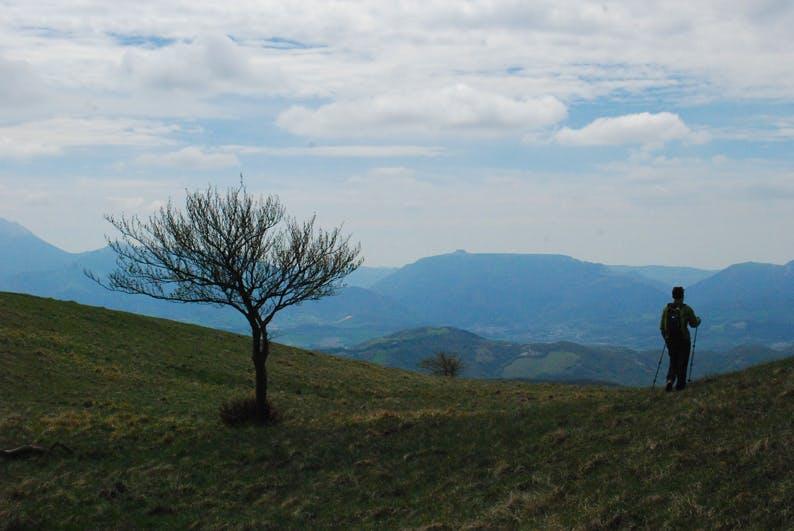 Gola del Furlo - Monte Paganuccio (PU)
