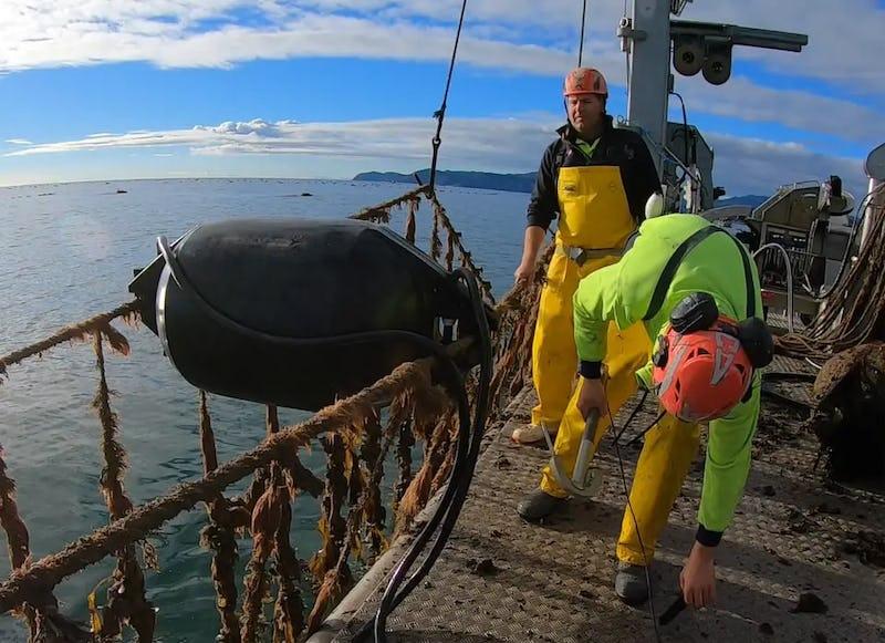 marine flex aquaculture floats