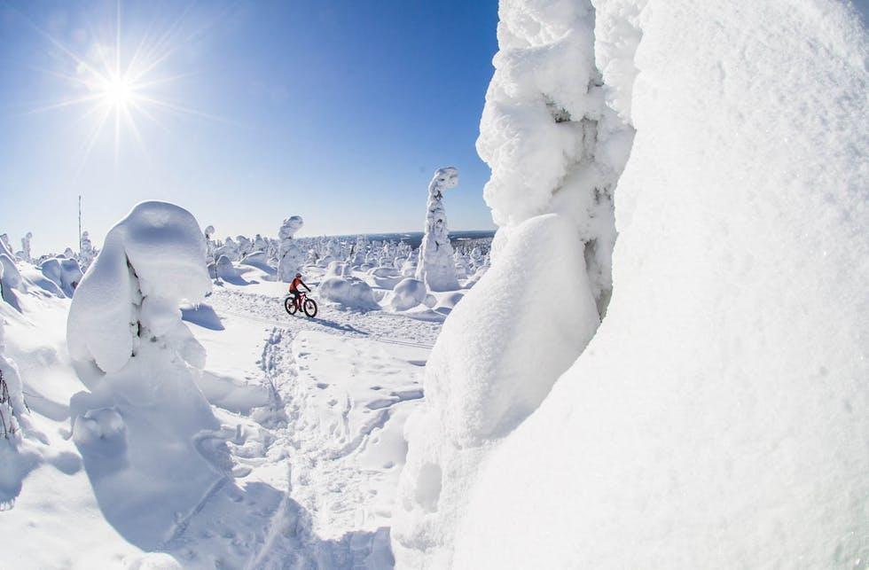 Luonnonrauhaa ja lumivarmaa lomailua Syötteellä