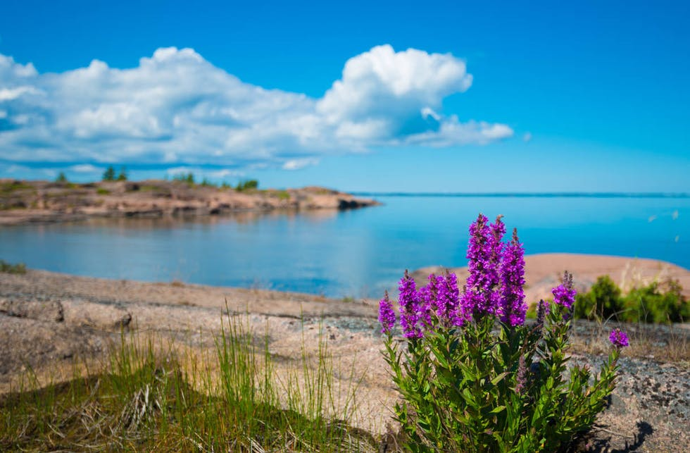 Pitkiä hiekkarantoja ja ihania silokallioita! Täältä löytyvät Maarianhaminan parhaat uimapaikat
