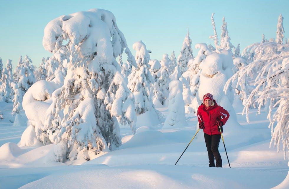 Salla on Vuoden hiihtokeskus 2021 – Vuoden lähikeskuksen tittelin vei Kouvolan Mielakka