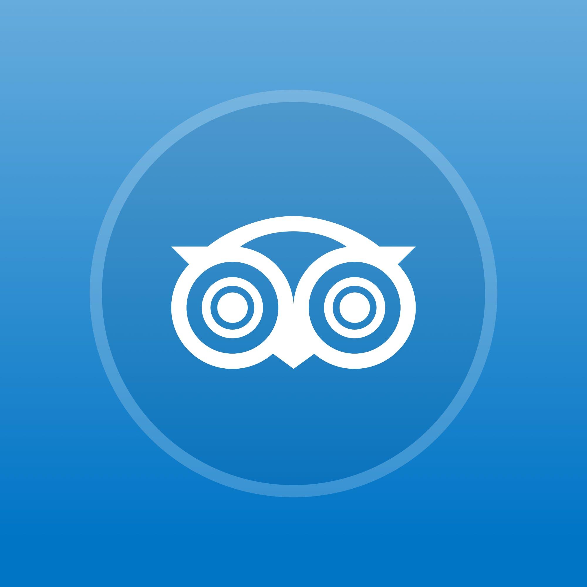 yobet体育官网Medallia酒店提供TripAdvisor评论