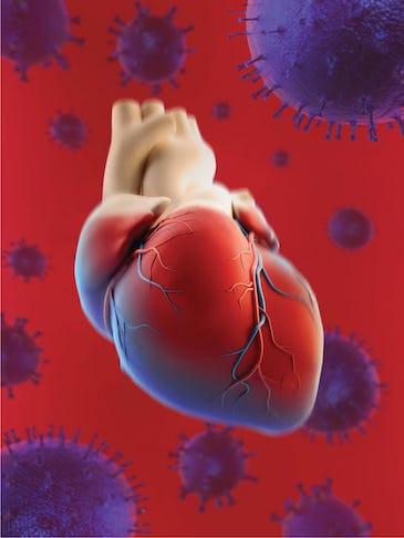 Cardiologii trag un semnal de alarmă: pacienții cardiaci trebuie tratați!