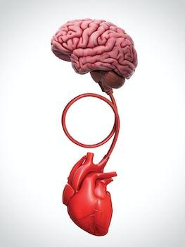 COVID- 19 - Atac de panica sau atac de cord? Cum sa le deosebim?