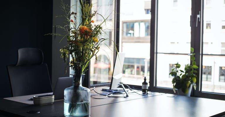 meevo Fit am Schreibtisch