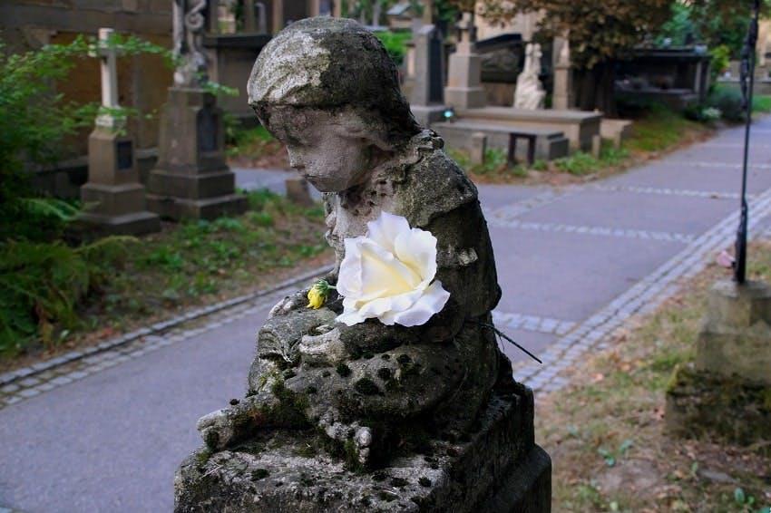 statue funéraire d'ange avec rose blanche posée sur son bras