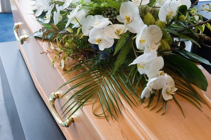 cercueil en bois avec orchidées blanches et du feuillage vert