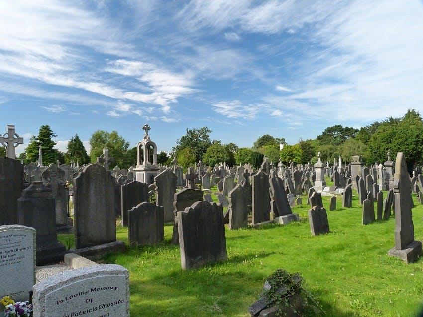 cimetière arboré et enherbé avec stèles