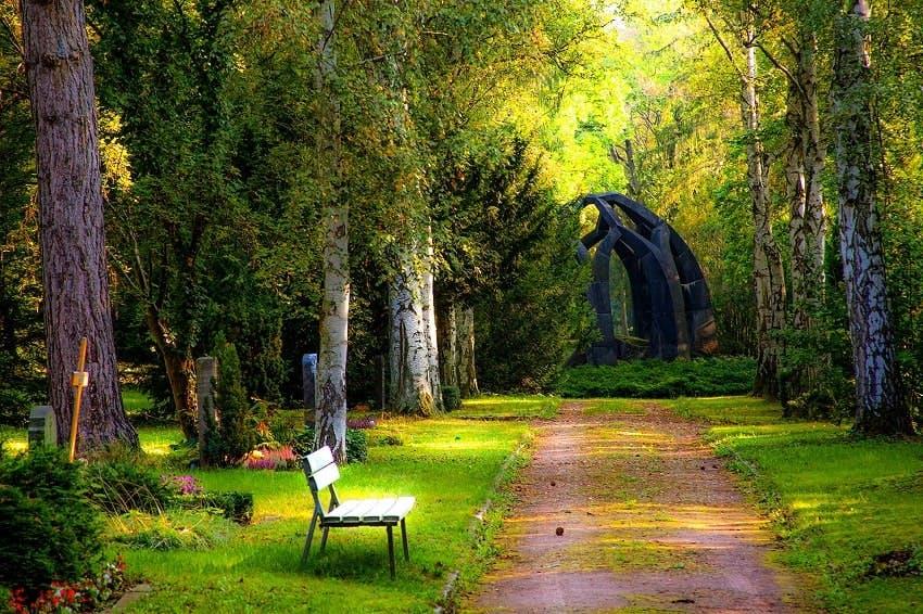 banc dans une allée de cimetière avec de la végétation