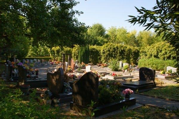 cimetière intercommunale de tremblay