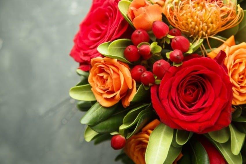 couleurs vives fleurs