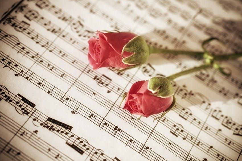 notes de musiques sur lesquelles sont posées deux roses rouges