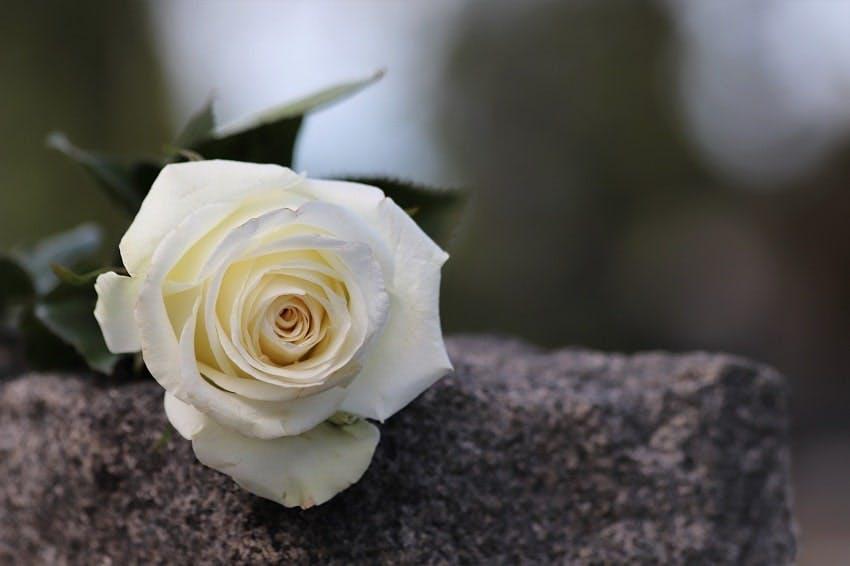 enterrement samedi, dimanche ou jour férié