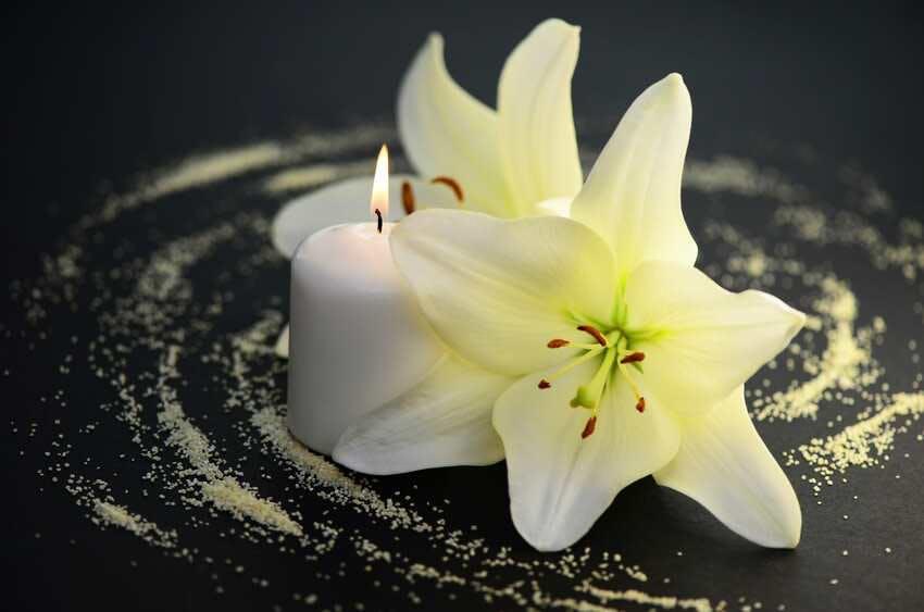 fleurs deuil espoir