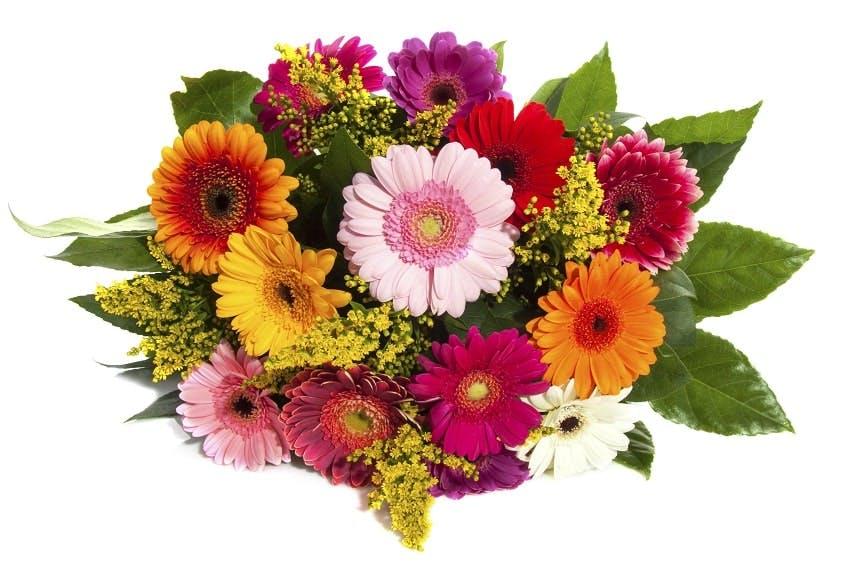 bouquet de deuil avec des fleurs rouges, violettes, jaunes, oranges, blanches