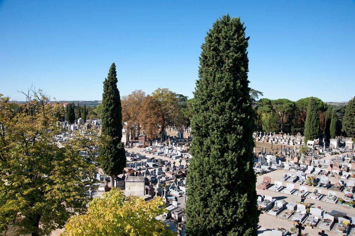cimetière albi
