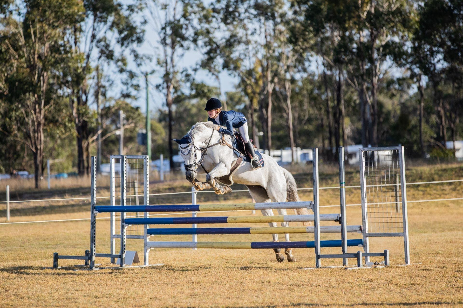 qric - horse rider jumping