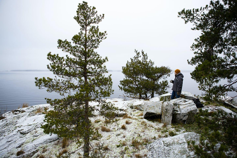 Mies seisoo kalliolla veden äärellä, muutama mänty ympäröi. Kuvaaja: Ville Lehvonen