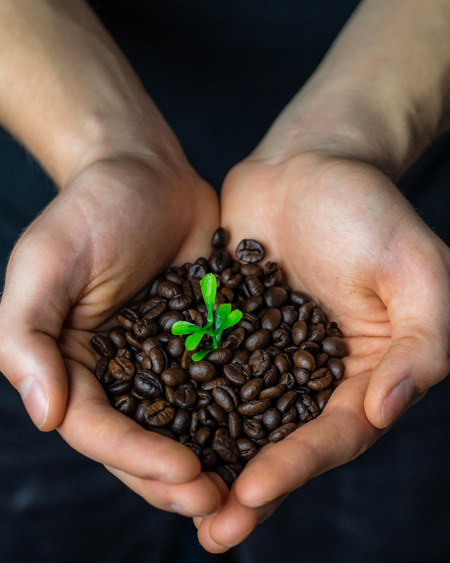 Meltwater customer stories: Fairtrade Denmark