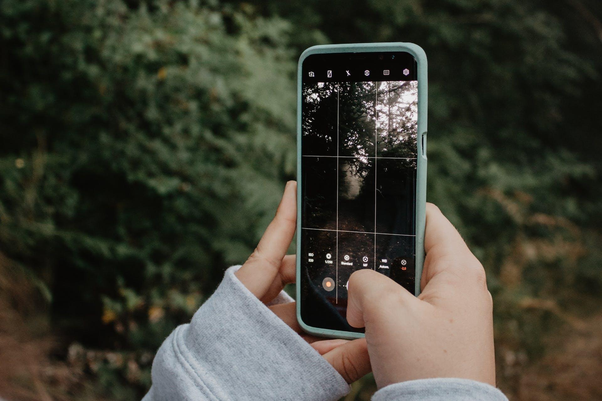 Man sieht, wie jemand mit seinem Smartphone ein Bild eines Waldes für Social Media aufnimmt als Header Bild für unseren Beitrag zu den Social Media Bildgrößen 2021