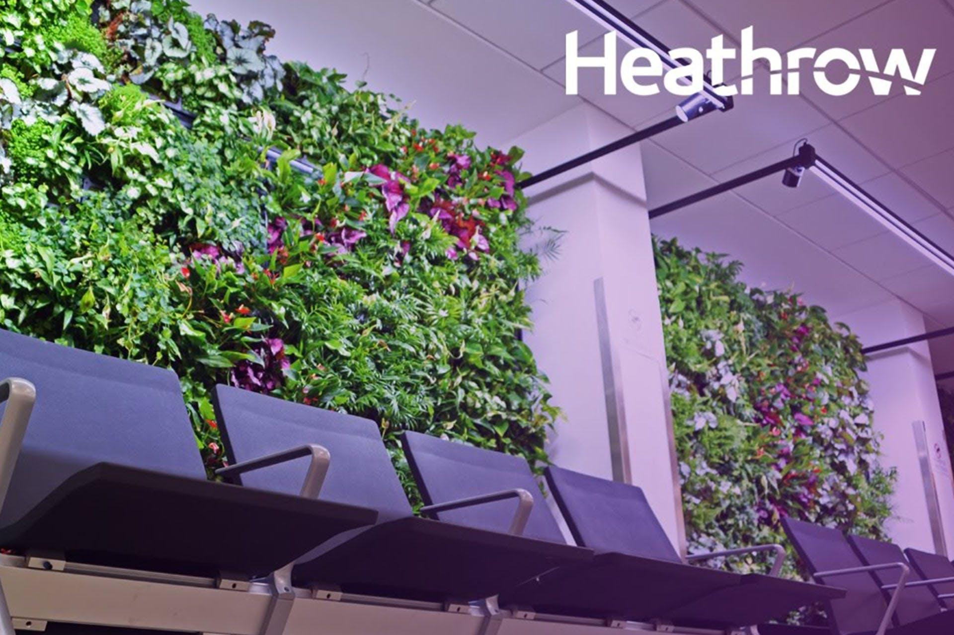 Image of Heathrow's eco wall