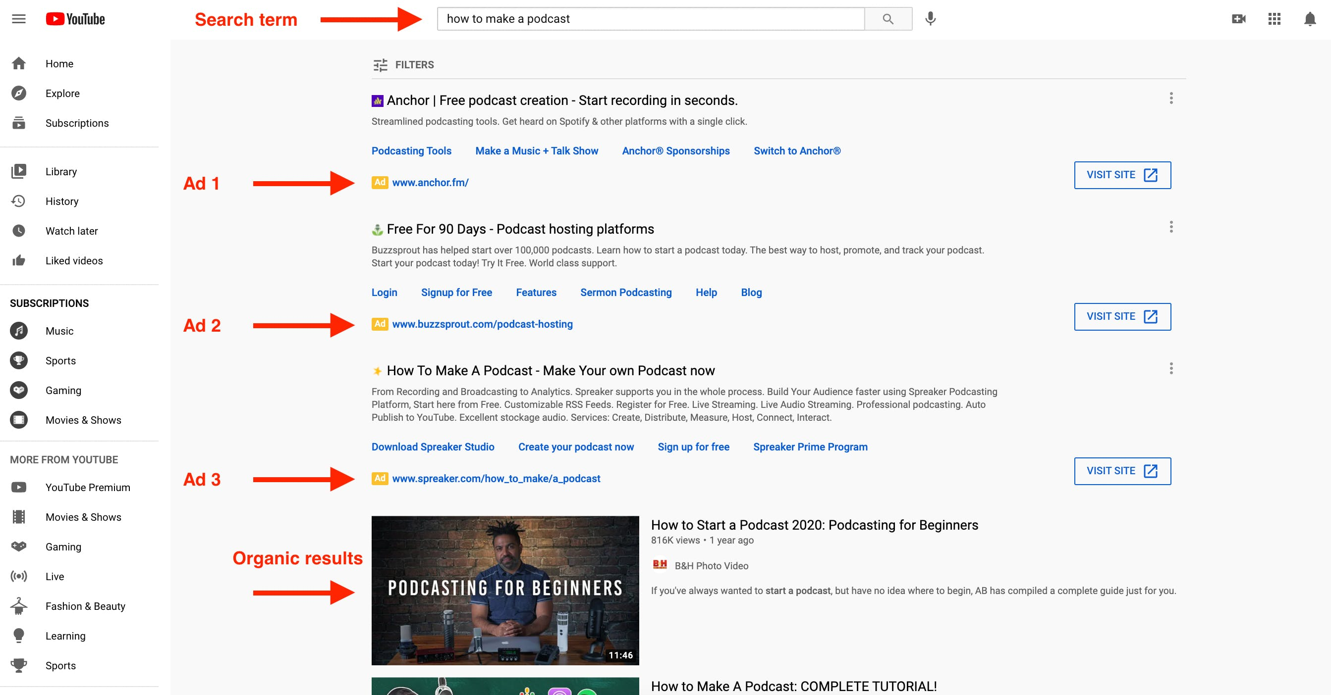 Example of Non video YouTube ads showing multiple ads showing before the organic video results
