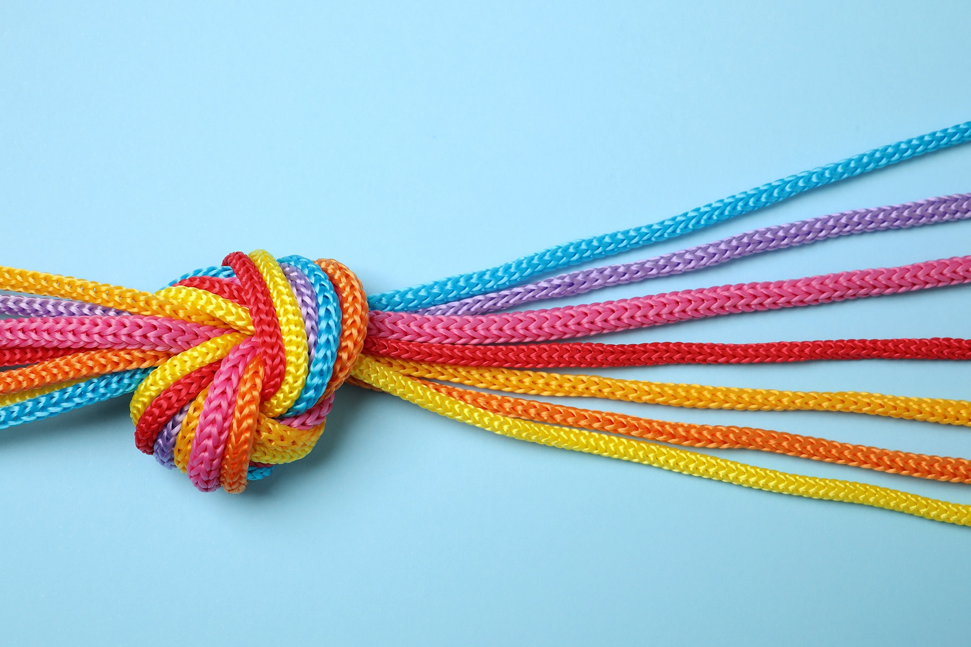 A group of different colored strings that are tied together in a knot. This image is being used as the hero image on a blog about reputation management.