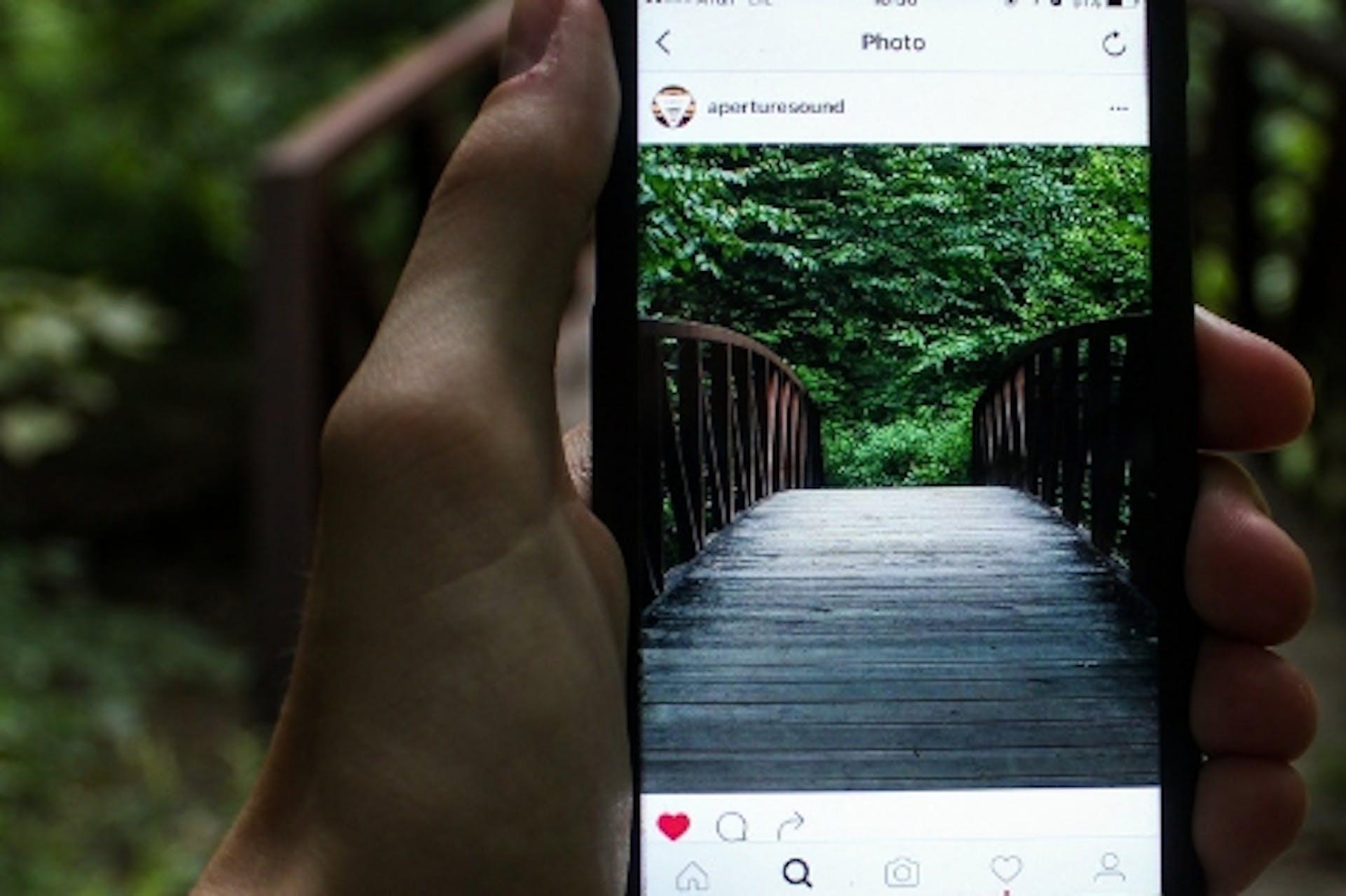Smartphone mit Instagram Feed Brücke und Wald Aufschrift Instagram Stories Meltwater