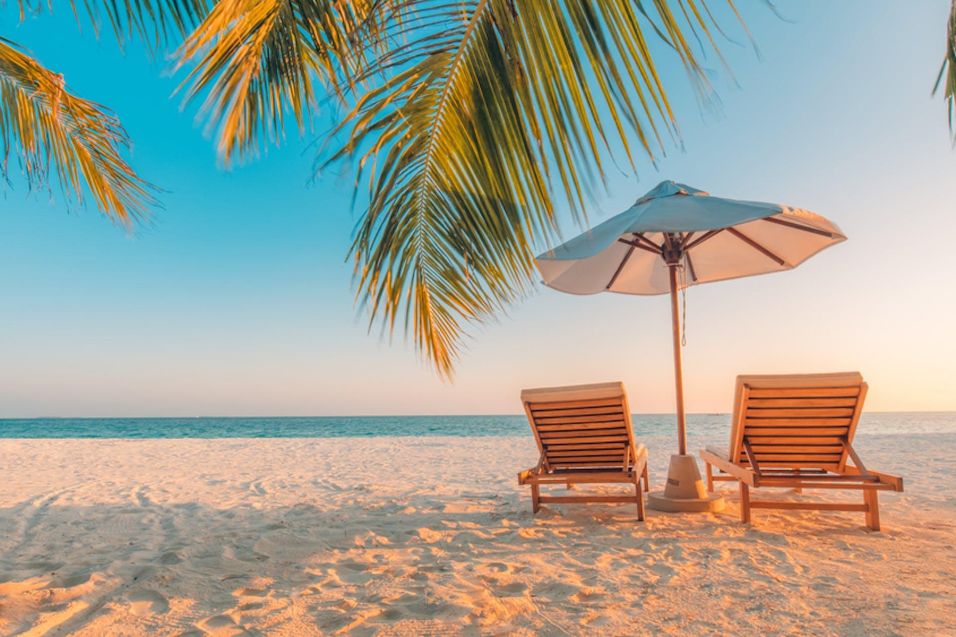 zwei Liegestühle am Strand mit Palmen