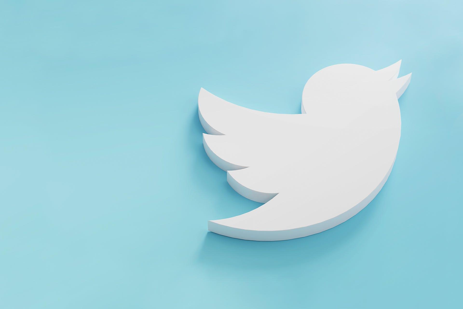 White Twitter bird over light blue background. Twitter marketing strategy blog.