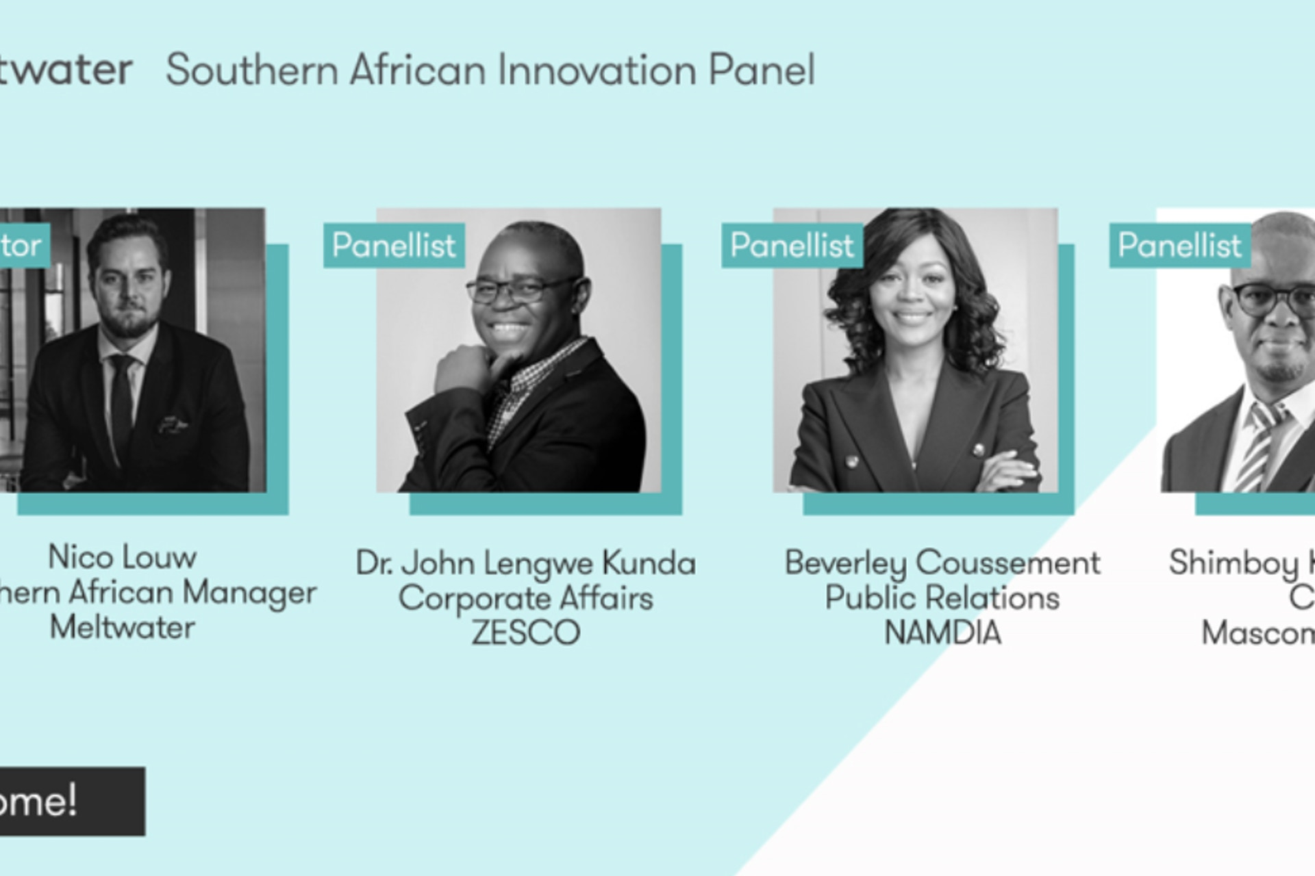 southern african innovation panel