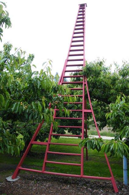 World's tallest tripod ladder