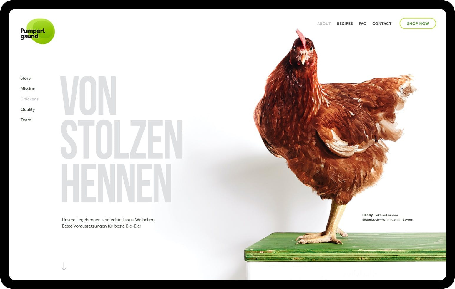 Digital user interface showing Pumperlgsund homepage with photo of big hen next to slogan 'von stolzen Hennen'