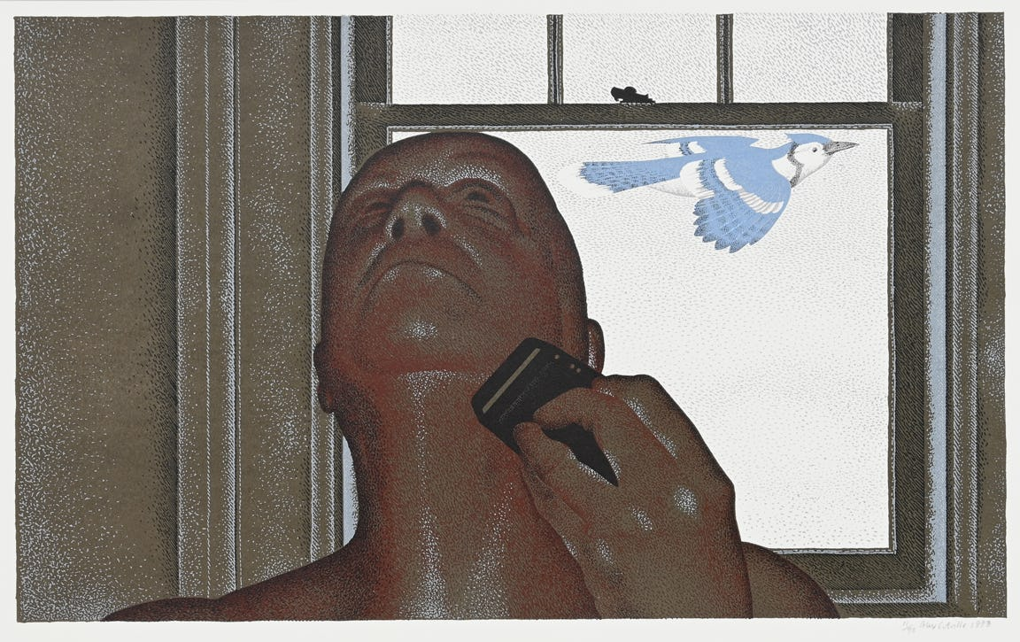 artist and blue jay by alex colville
