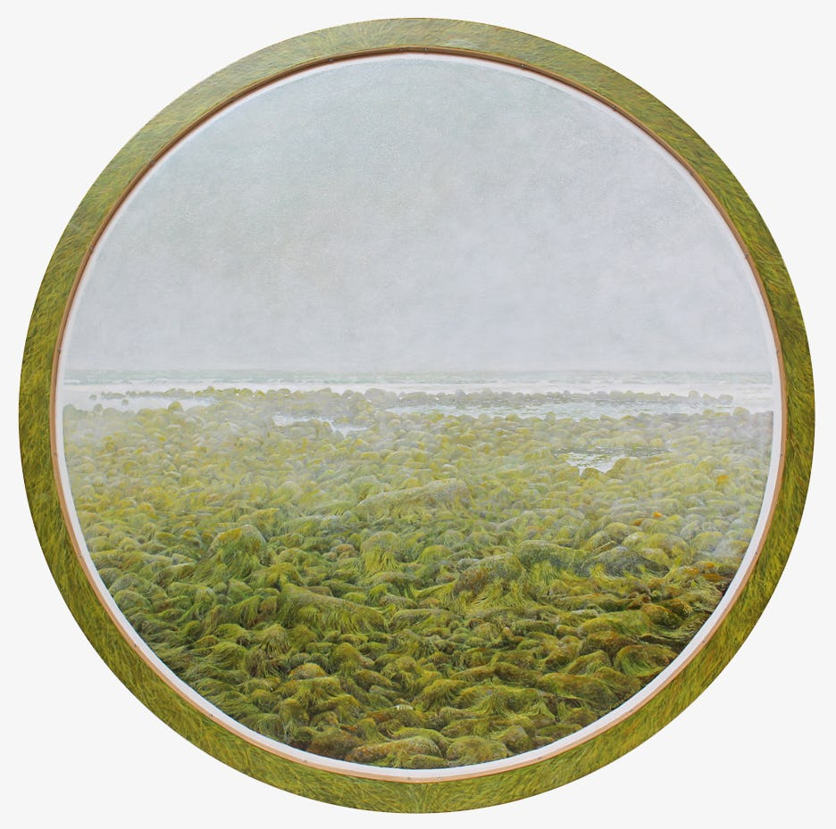 Seaweed by Tom Forrestall