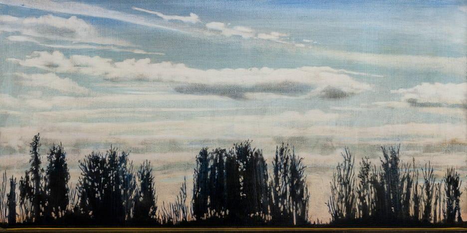 Windbreak #1 by Stephen Hutchings