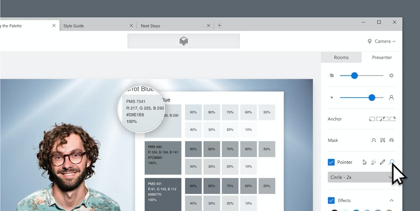 Screenshot of magnifier pointer with man standing next to color palette in gray