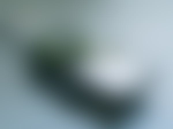 Teaser Picture