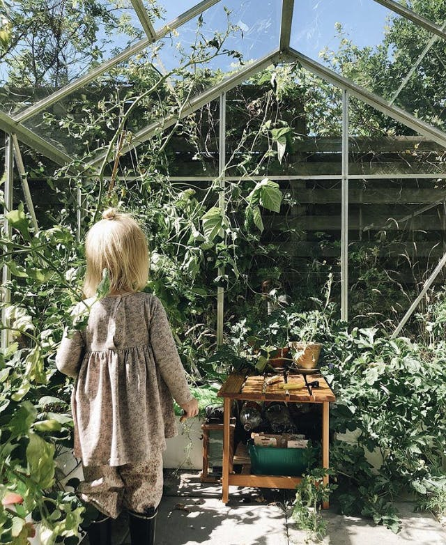 Et barn står i et drivhus og kigger på planter