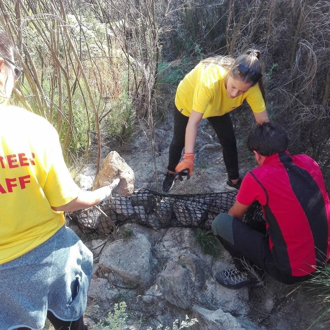 Volunteers building a gabion