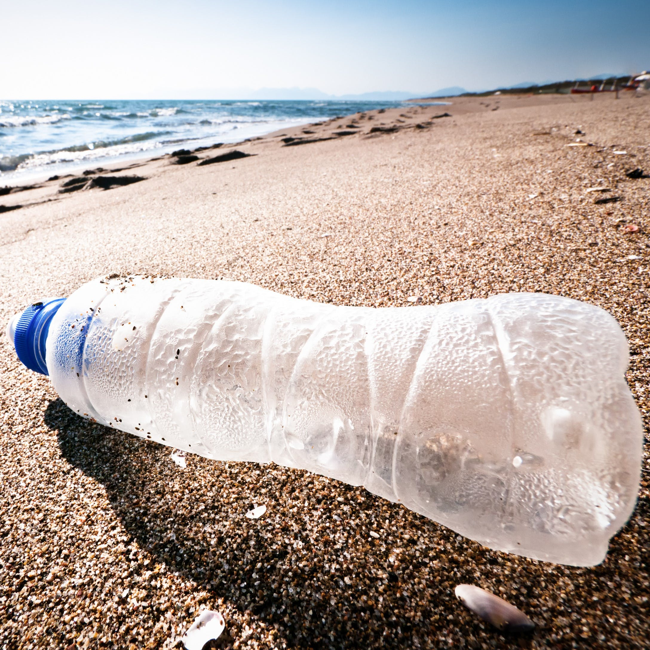 Plastic bottle washed up on beach.