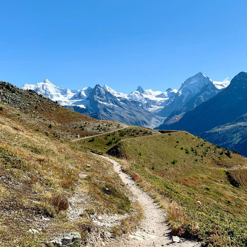 A mountain footpath with snowy tops in the background.