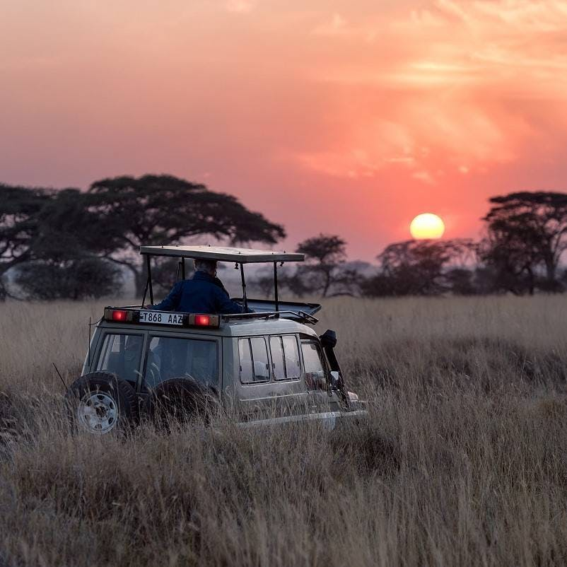 A 4x4 taking people on a nature based tourism safari. Rewilding can provide sustainable livelihoods for rural communities through nature-based tourism