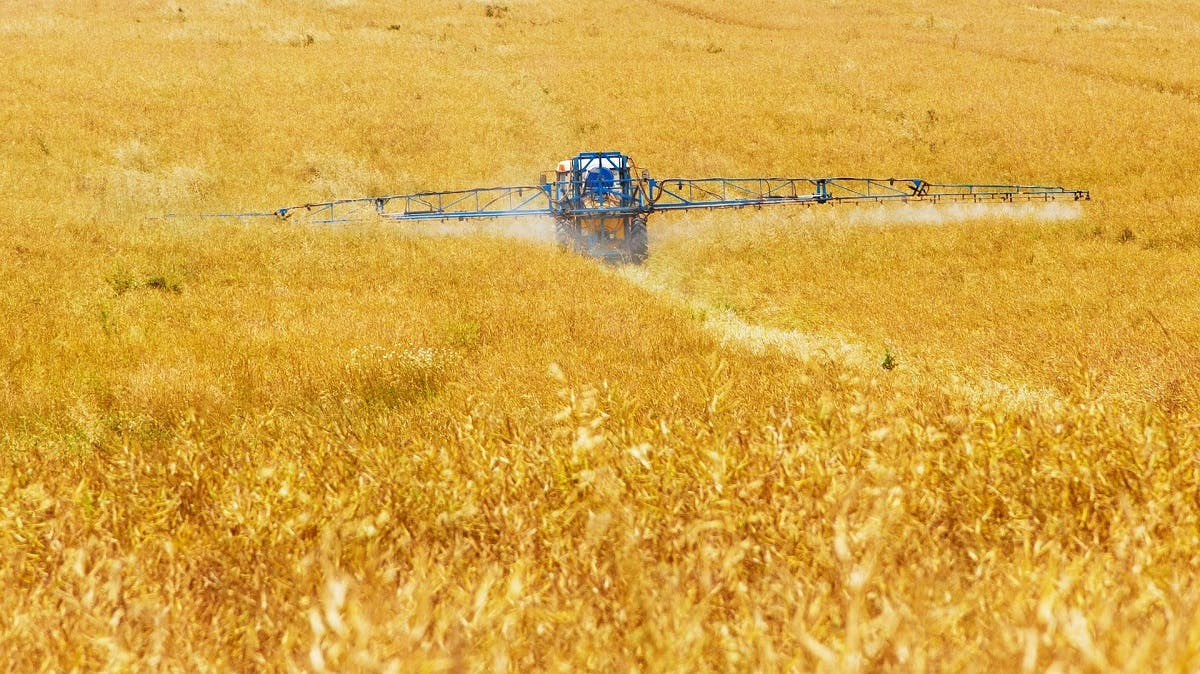 Pesticides being sprayed over cereal crops . This is deadly to bee populations. Buy bee friendly foods to help save the bees from bee extinction..