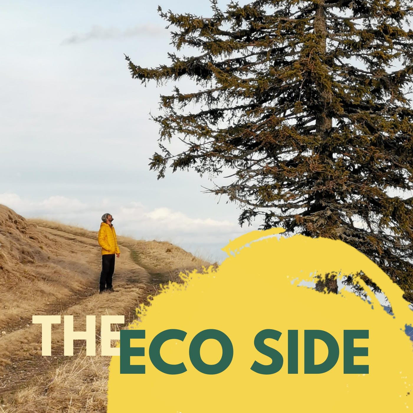 Mossy Earth's The Eco Side podcast