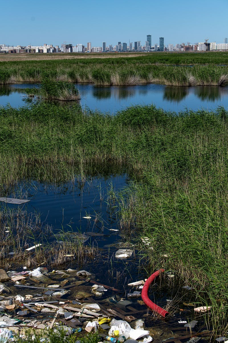 A polluted wetland close to a city.